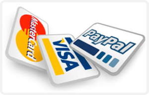paypal-credit-card-online-store